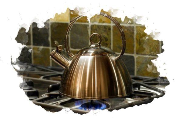 ТОП-7 лучших чайников со свистком: какой купить, плюсы и минусы, отзывы, цена