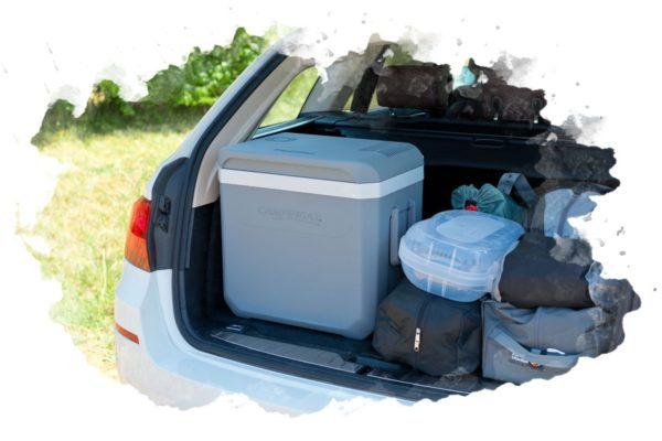 ТОП-7 лучших автомобильных холодильников: какой купить, отзывы, цена