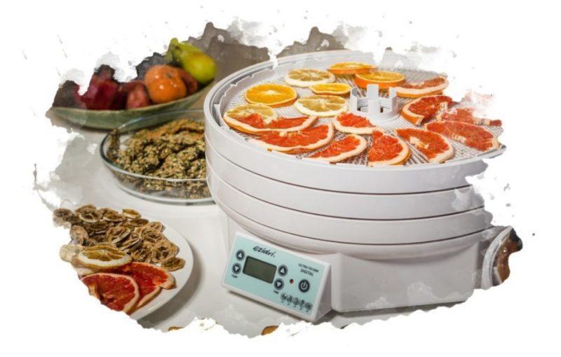 Как выбрать сушилку для овощей и фруктов рейтинг лучших производителей