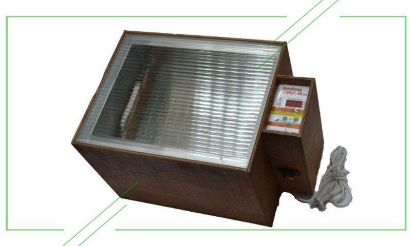 ТОП-7 лучших инкубаторов для яиц: обзор, отзывы
