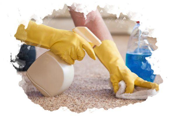 ТОП-7 лучших средств для чистки ковров: какой выбрать, плюсы и минусы, отзывы