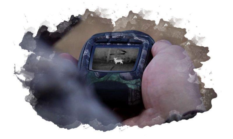 ТОП-7 лучших тепловизоров для охоты: какой выбрать, характеристики, отзывы