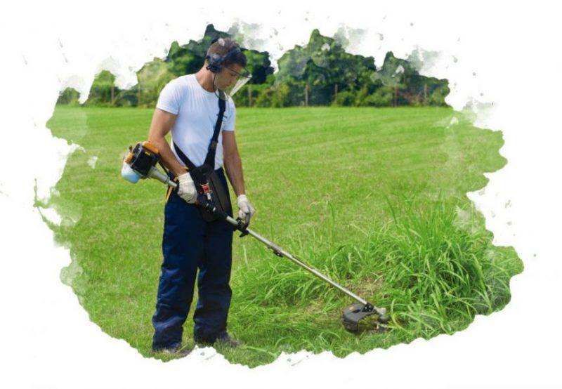 Рейтинг электрических триммеров для травы