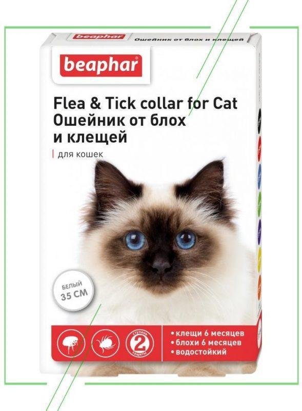 Flea & Tick collar for Cat (Beaphar)_result