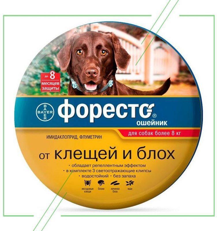 Форесто (Bayer) для собак_result