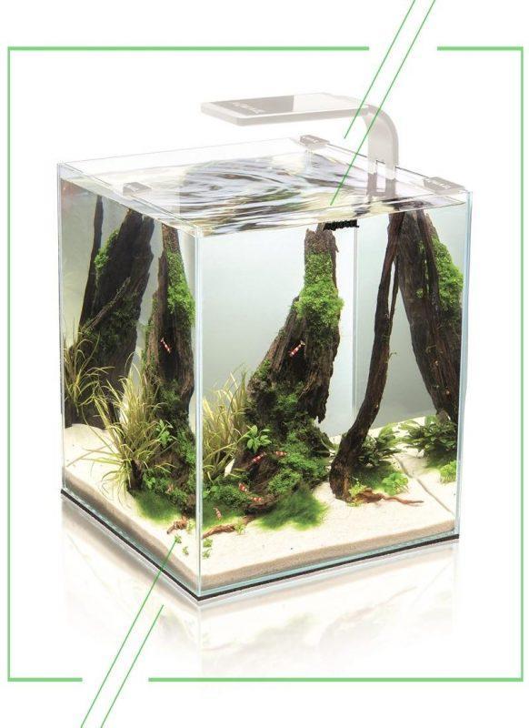 ТОП-7 лучших аквариумов для дома: рейтинг, отзывы