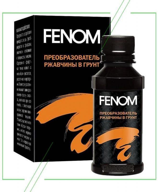 FENOM_result