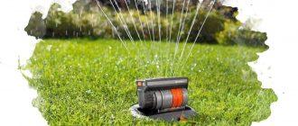 дождеватель для сада