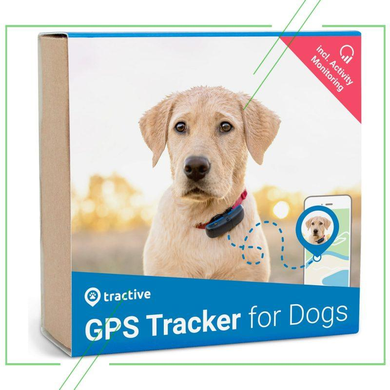 Tractive GPS DOG_result