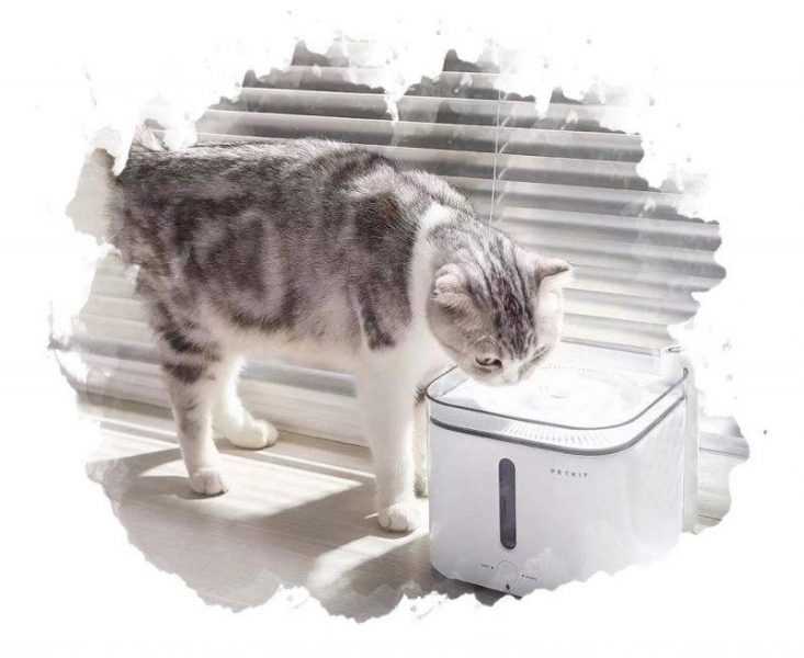 ТОП-7 лучших автопоилок (фонтанов) для кошек и собак